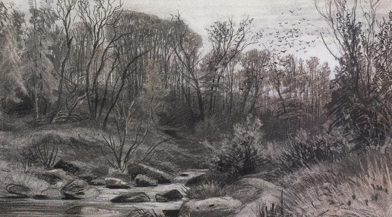 Шишкин И.И. (1832–1898), Лесной ручей. Вечер (1871)